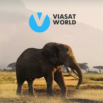 Websites for Viasat World